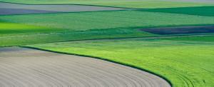 Agribalyse éco-conception